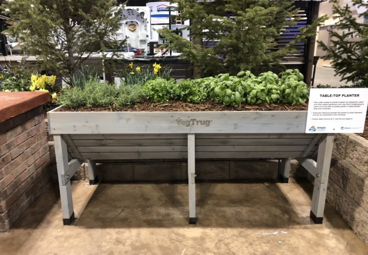Colorado Home and Garden Show Table Top Planter